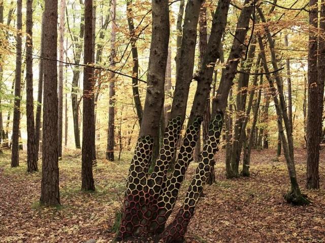 Jetzt zeigen Künstler in freier Natur ihre schönsten Laub-Kunstwerke