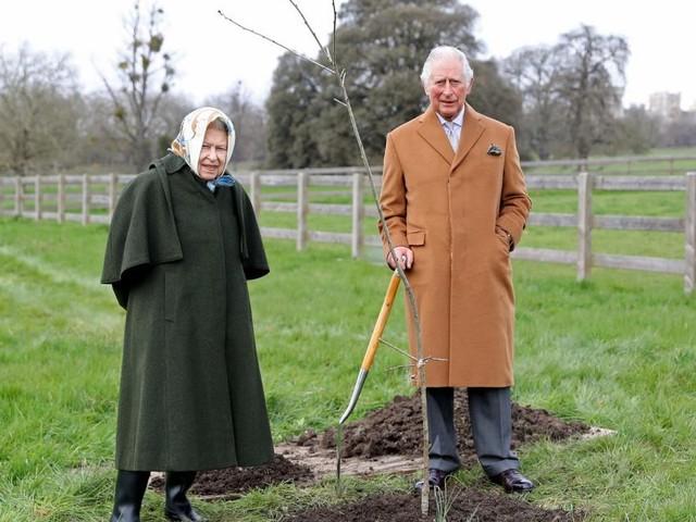 Adelskenner: Queen wird Fehler, den sie mit Diana machte, kein zweites Mal begehen