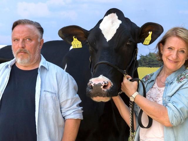 """TV-Tipp des Tages: TV-Tipp: """"Gloria, die schönste Kuh meiner Schwester"""""""