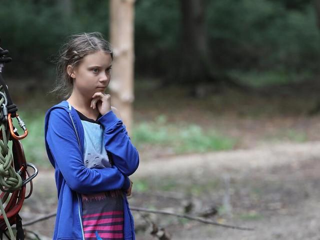 """Greta Thunberg am Braunkohle-Loch im Hambacher Forst: """"Gewaltig, verheerend, irgendwie traurig"""""""