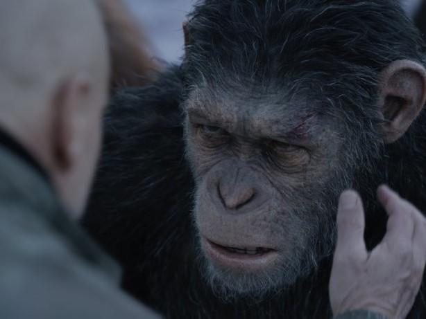 """""""Planet der Affen 4"""" hat einen Regisseur – und könnte schon bald erscheinen"""