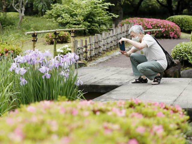Nach Corona-Notstand: Japans Kaiserpalast öffnet seine Gärten wieder