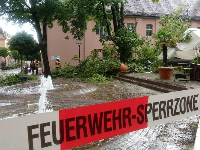 Schweres Unwetter in Rastatt: Baum fällt bei Gewitter um – vier Verletzte