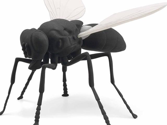 Ein 3-jähriges Mädchen zerstört eine Fliege – das kostet 50.000 Euro