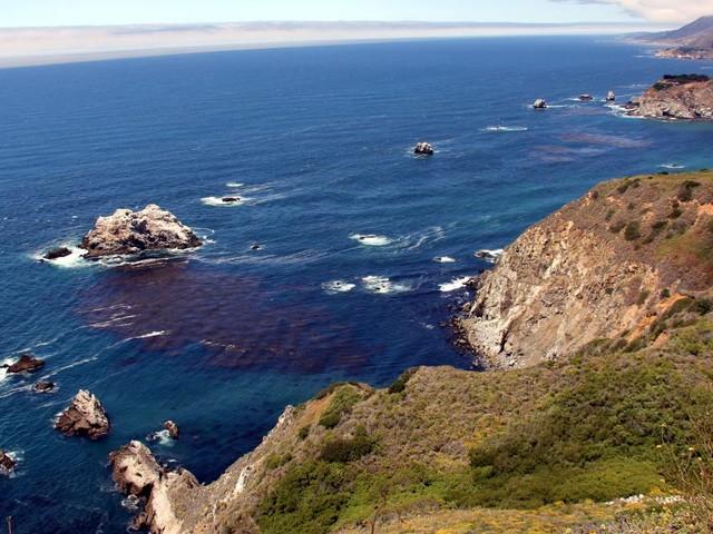 Taucherin entdeckt zehntausende Golfbälle im Meer vor Kalifornien