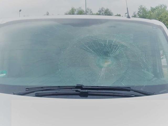 Nicht auf Verkehr geachtet: 28-Jährige von Transporter erfasst und schwer verletzt