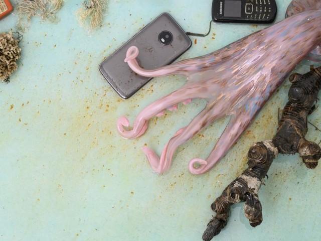 Flüchtlinge, Plastikmüll, Unsicherheit: Warum Kunst das Meer neu entdeckt