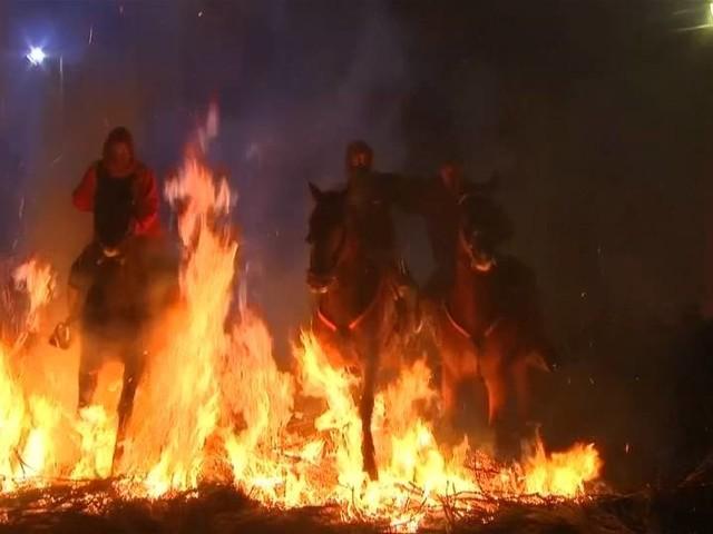"""Video: Pferde in Flammen: Spanische Gläubige feiern """"Las Luminarias"""""""