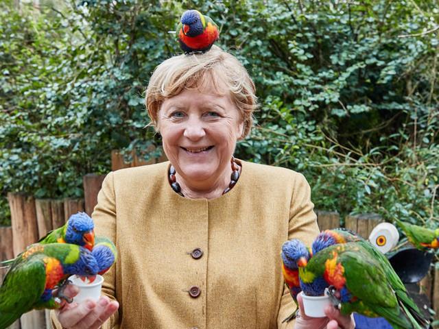 """Nur beim Uhu sagte Merkel """"Nein"""""""