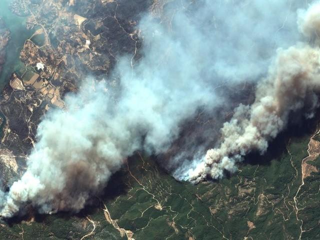 Bisher vier Todesopfer bei Waldbränden in der Türkei