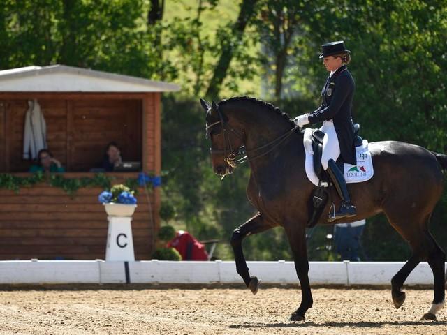 Dressur: Stute Fohlenhof Rock'n Rose von Olympiasiegerin Dorothee Schneider stirbt bei Siegerehrung