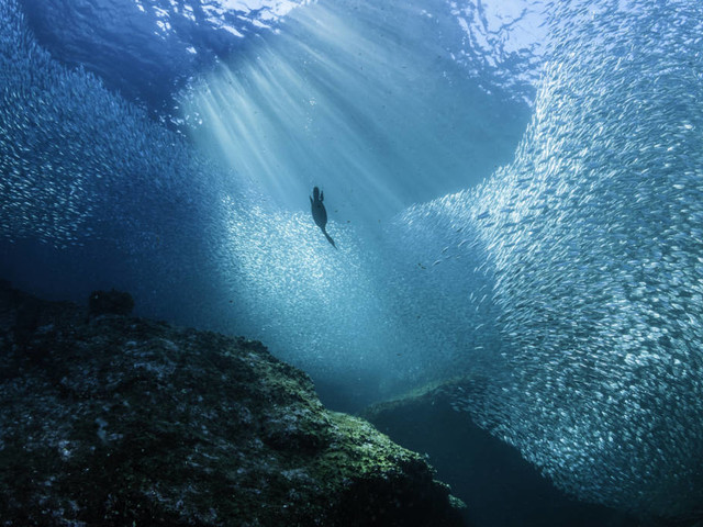 Alarmierende Studie: So wird der Klimawandel die Farbe des Meeres verändern