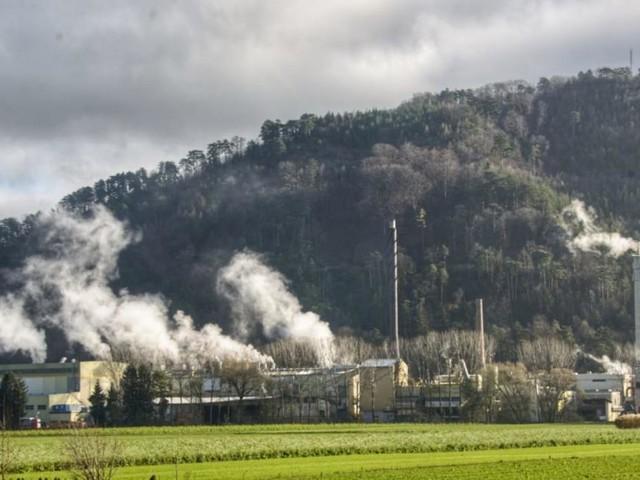 Volksabstimmung: Prinzhorns Papierfabrik mobilisiert für Ausbau