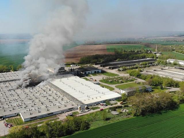 Rauchschwaden kilometerweit zu sehen - Zuchtanlage fing Feuer: 2000 Ferkel sterben bei Großbrand in Sachsen-Anhalt