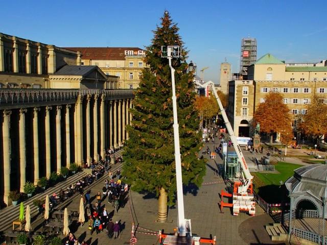 Weihnachten kann kommen: Stuttgarts Christbaum steht nun doch