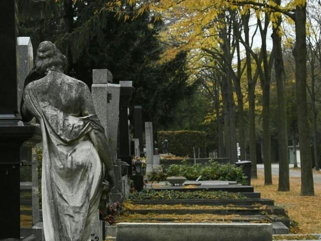 Laufen auf Zentralfriedhof? Beschwerde bei Volksanwaltschaft eingelegt