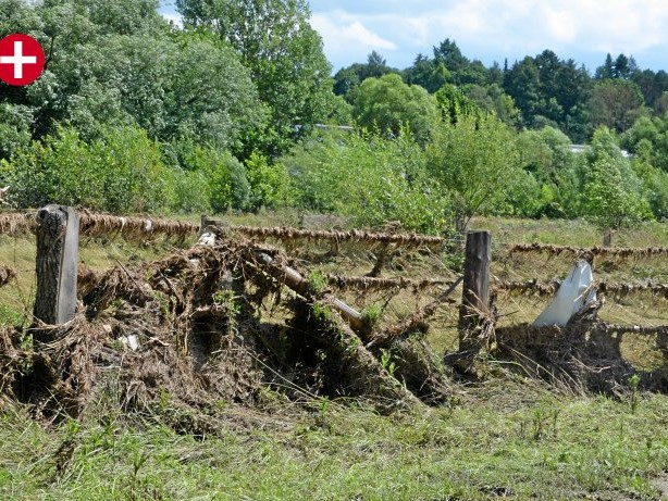 Hochwasser: Sundern: Unfallverhütung geht jetzt vor Grünschnitt