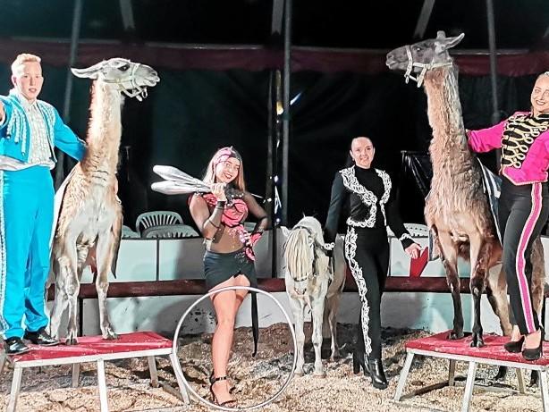 Pandemie: Hagen: Zirkus-Team kehrt nach Corona-Pause zurück in Manege