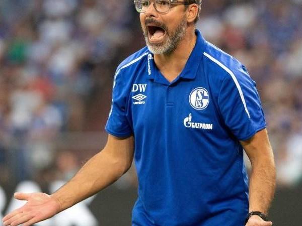 Bundesliga-Freitagsspiel: Schalke will Lauf fortsetzen - Wagner: «Wahnsinnig Lust»