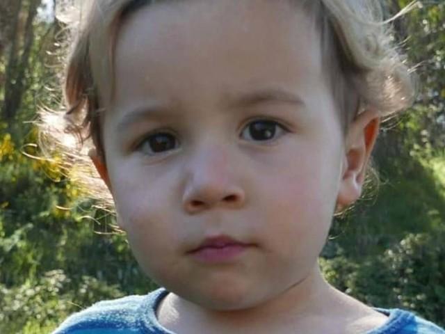 Ein kleines Wunder: Vermisster Zweijähriger nach Tagen im Wald gefunden