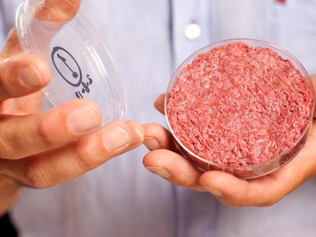 """""""In ein paar Jahren gibt es Fleisch aus dem Labor im Supermarkt"""""""