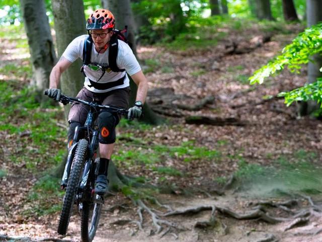 Routen im Test: Was der Wienerwald für Mountainbiker bietet