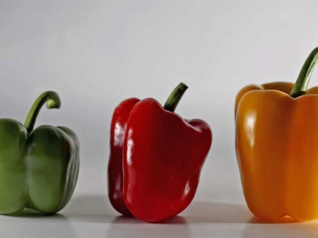 Gefüllte Paprikaschoten: Welche Variante kochen Sie heute nach?