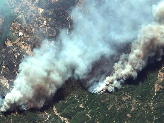 Italien, Griechenland, Türkei: Waldbrände in Südeuropa - das Schlimmste steht noch bevor