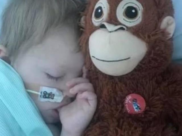 """""""Sie kennen ihr Kind am besten"""" - Blaue Flecken waren Symptome: Mutter von krebskrankem Harry appelliert an Eltern"""
