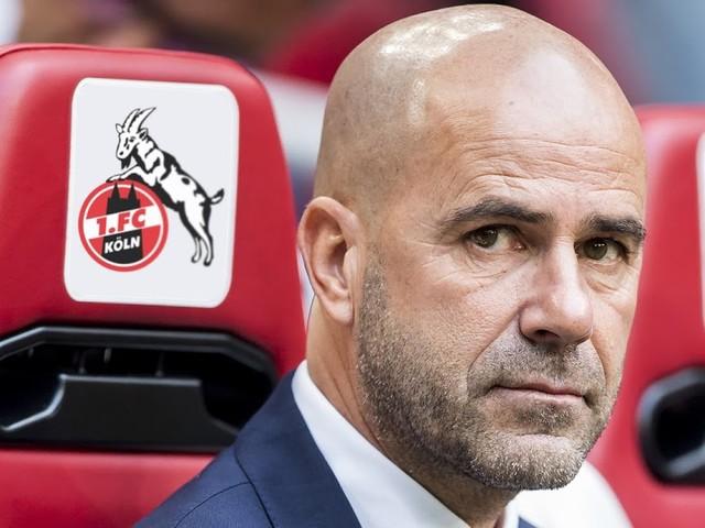 1. FC Köln verpflichtet Peter Bosz als neuen Trainer