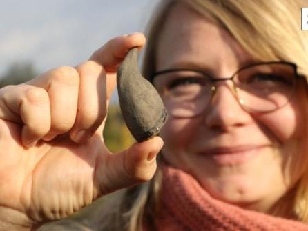 """""""Sensationsfund"""" in der Kiesgrube: Was lehrt uns der Pottwal über die Ur-Nordsee?"""