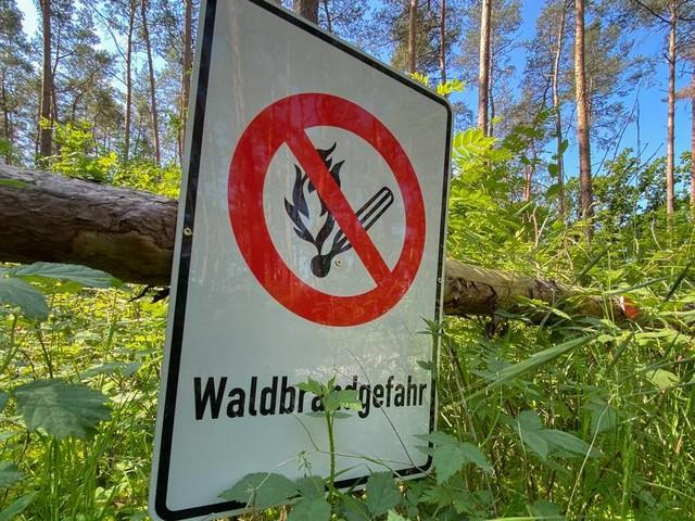 Hohes Risiko: Was Sie über Waldbrände wissen sollten