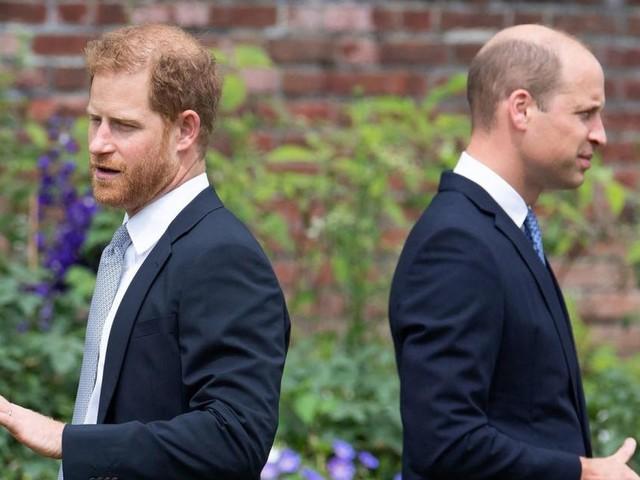 Prinz Harry ignorierte Meghans Rat - zur Freude von Prinz William?