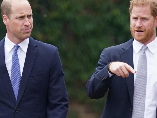 Lippenleser: Harrys und Williams Gespräch bei Enthüllung von Diana-Denkmal