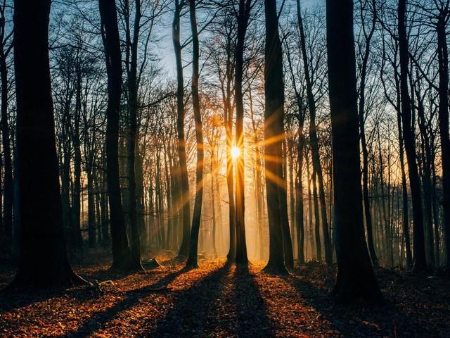 Wetter in Deutschland: Die erwartete Kältewelle bleibt aus