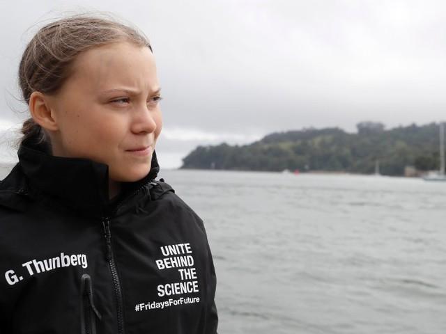Ein Jahr Proteste für Klimaschutz: Warum der Greta-Hype zum Risiko wird