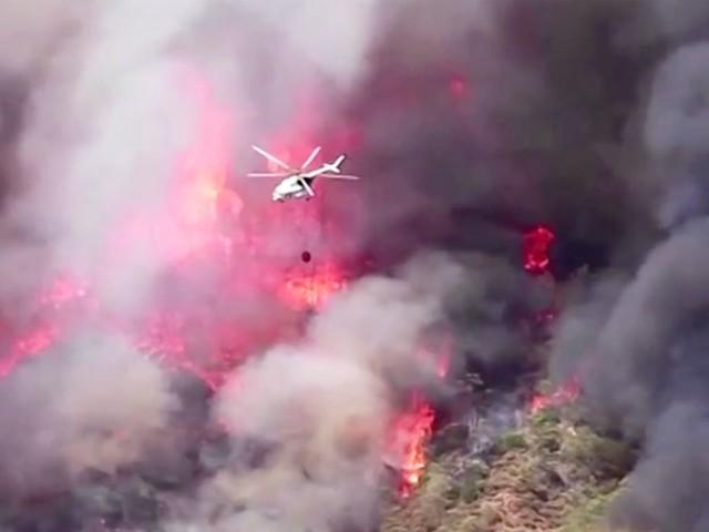 Feuer in Urlaubsregion: Heftige Waldbrände in der Türkei: Touristen müssen Hotels und Unterkünfte verlassen
