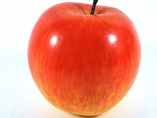 """Apple bringt das Material """"Jeder kann kreativ sein"""" jetzt auch nach Deutschland"""