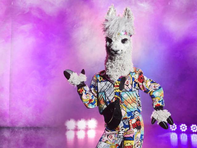 """""""The Masked Singer"""" 2020 – Staffel 3: Wer steckt im Alpaka-Kostüm?"""