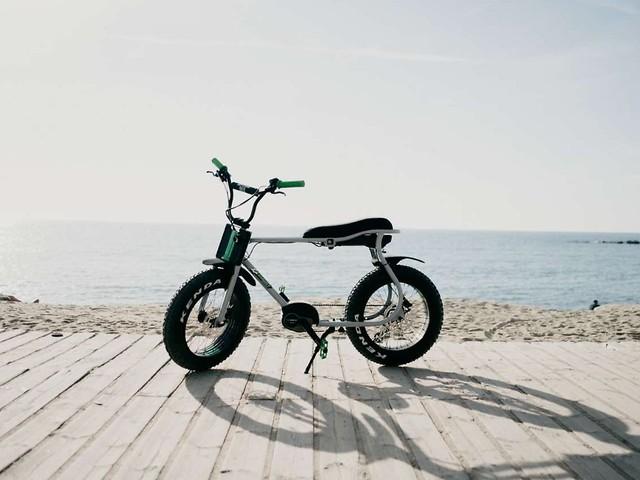 Ruff Cycles Lil Buddy: Ein cooles Pedelec zum Liebhaben