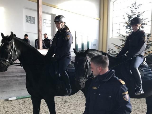 Berittene Polizei: Orbáns Pferde haben Dienst angetreten