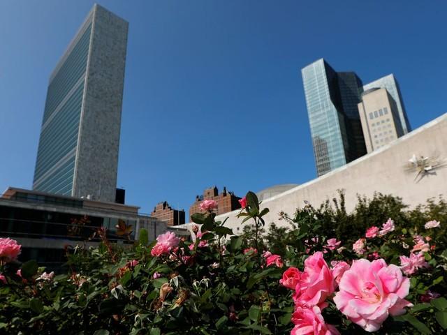 Uno feiert 75. Geburtstag – Donald Trump lässt sich kurzfristig vertreten