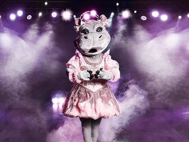 """ProSieben-Show im Live-Stream - So sehen Sie """"The Masked Singer"""" live im Internet"""