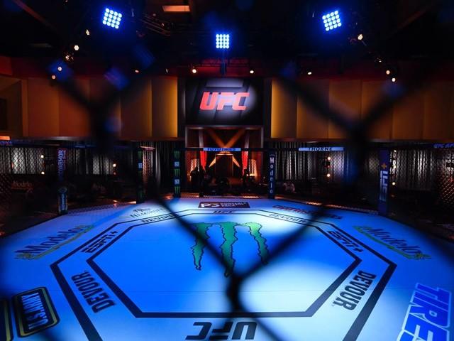UFC: UFC: Wann ist der nächste Kampf? Live-Übertragung und Co.