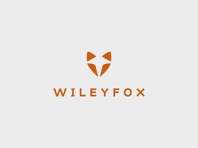 Wileyfox Pro kommt mit Windows 10 Mobile
