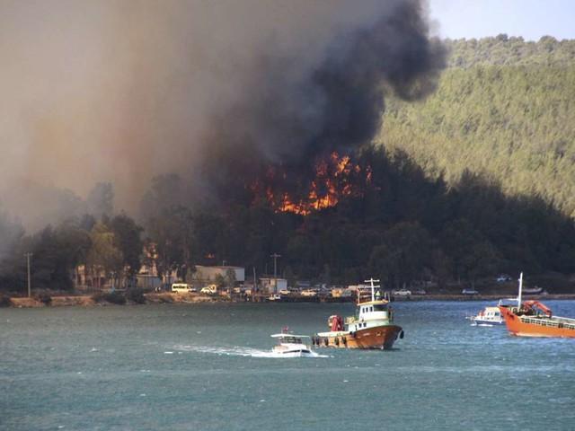 Türkei: Mindestens drei Tote bei Waldbränden