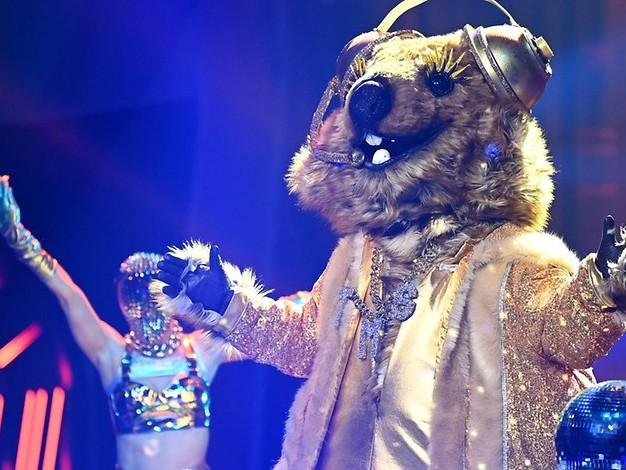 """Überraschung bei """"Masked Singer"""": Dieser Schauspieler steckte im Quokka-Kostüm"""