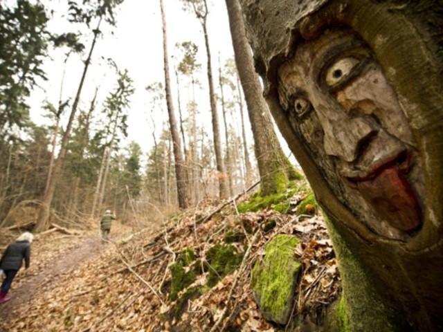 Aichtal: Ein Wald voller Fratzen