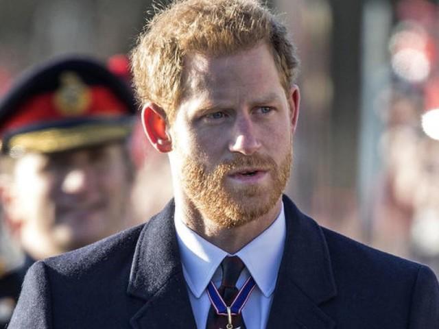 Palastinsider: Mit dieser Aktion führte Prinz Harry Queen Elizabeth hinters Licht