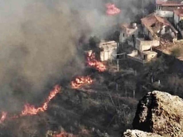 Feuer auf Gran Canaria außer Kontrolle : 100 Menschen von Waldbrand eingeschlossen
